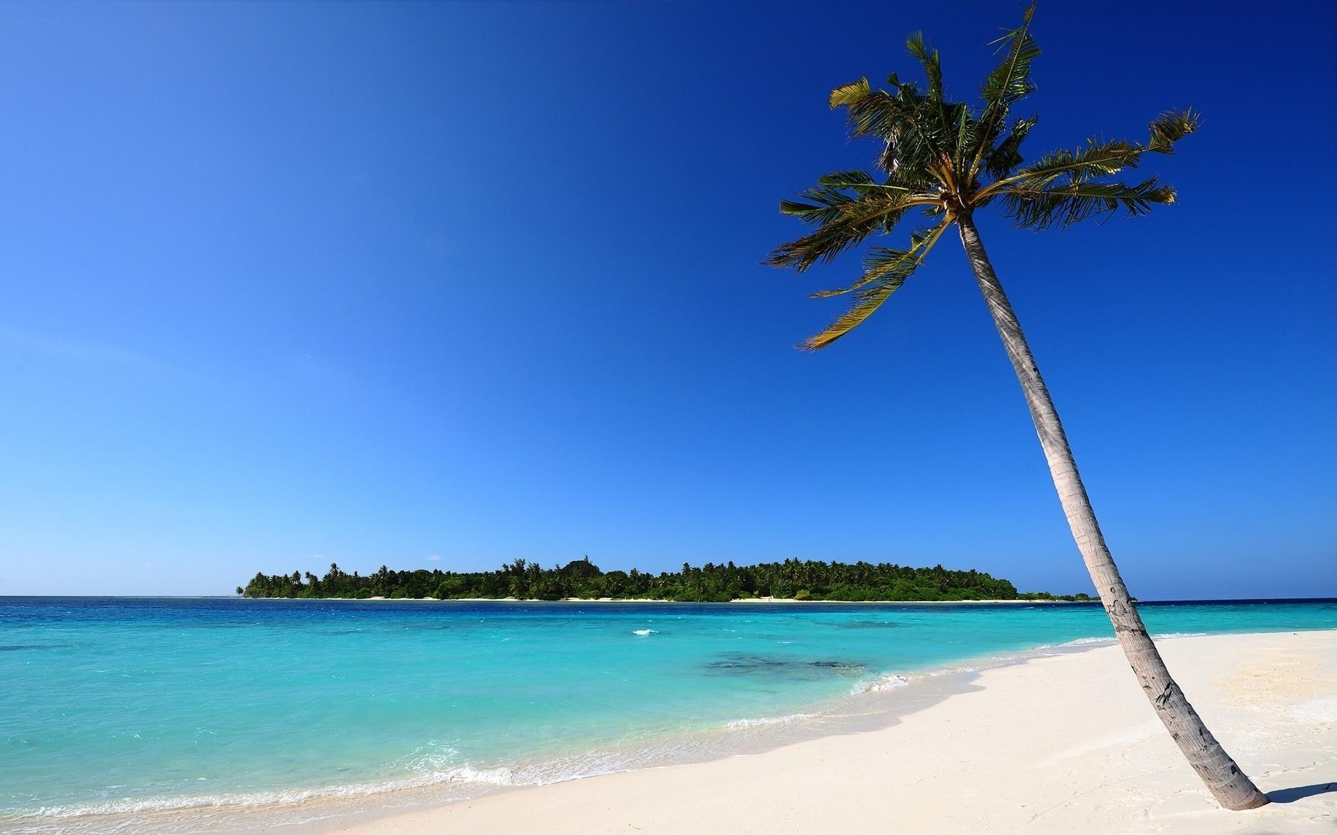 Paradise Beach  Wikipedia